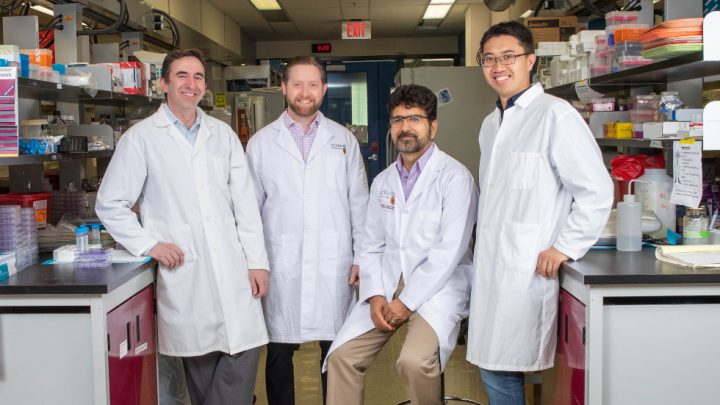 From left: Carlos Filipe, Matthew Miller, Ali Ashkar and Vincent Leung -- the research team who, in 2019, developed a vaccine-delivery platform that does not require refrigeration